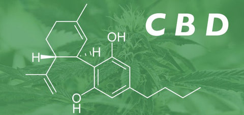 CBD Oil 101 - Ailments That It May Help With