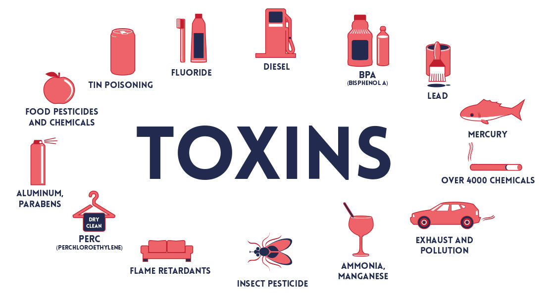 Are You Toxic?  Use This Quiz to Determine How Toxic Your Body Might Be.