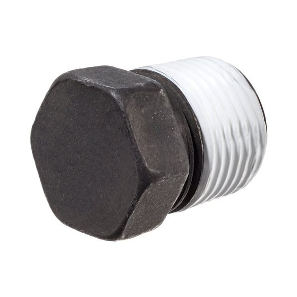 Black Coated Steel Class 3000 Hex Head Plug