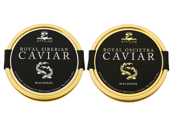 The Attilus Caviar Tasting Selection. Royal Siberian and Oscietra