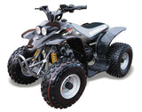 Quadzilla R100 - Black