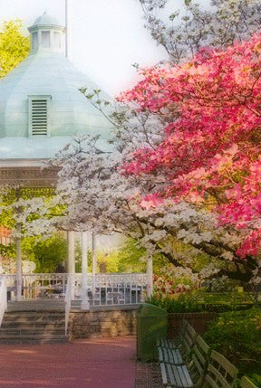 Springtime In Ligonier<br>Original Photograph