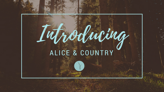 Introducing Alice & Country