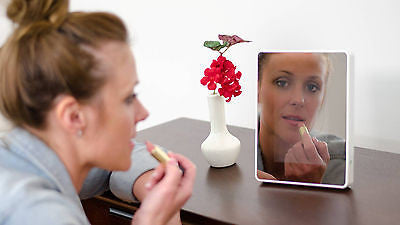 Reflections LED Photo Mirror Self Standing Mirror & Photo Frame In One