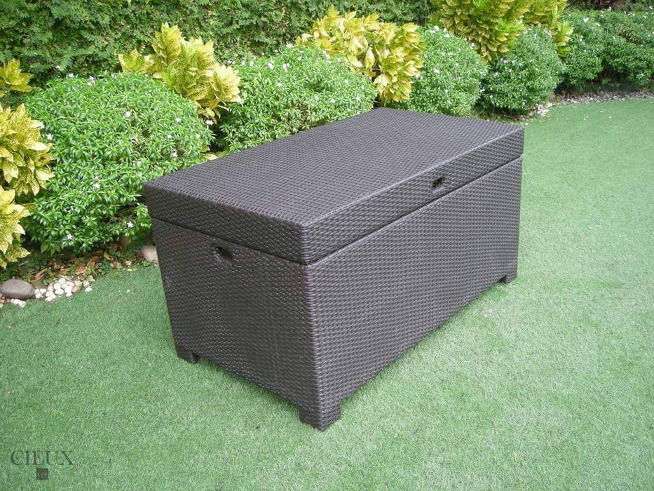 Provence Dark Chocolate Storage Trunk-Wholesale Furniture Brokers