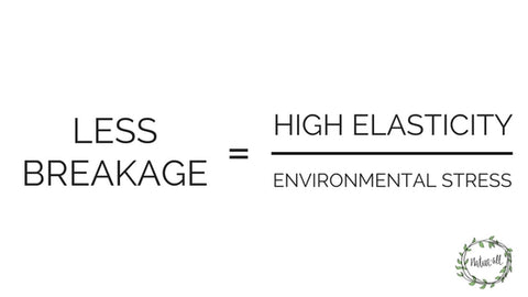 high elasticity less breakage equation