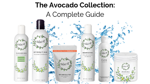 avocado collection guide