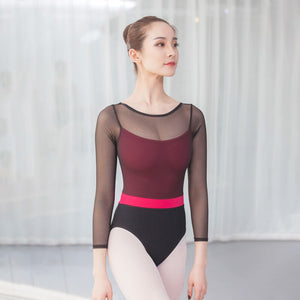 Bethany Women's Mesh Ballet or Dance with Pink Under Leotard and Stripe.  Available in 2 Color Options