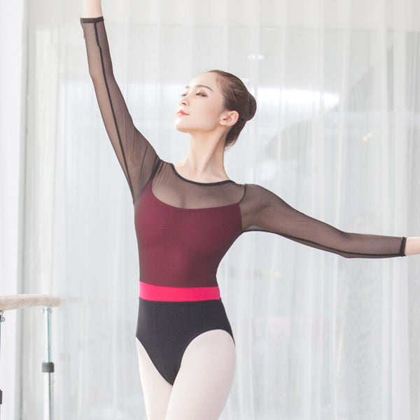 Bethany Women's Mesh Ballet or Dance with Pink Under Leotard and Stripe Available in 2 Color Options