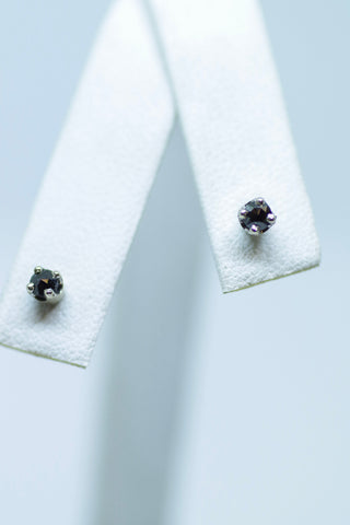14k White Gold Small Black Diamond Studs