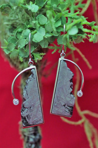(Design Ideas) 14k White Gold Meteorite and Diamond Earrings