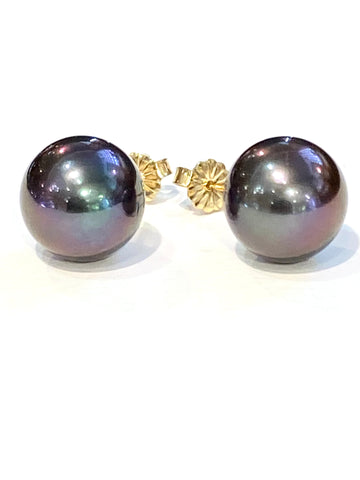 14k Yellow Gold Tahitian Pearl Earrings