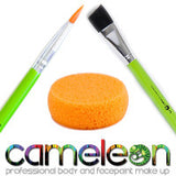 Cameleon Brushes & Sponges