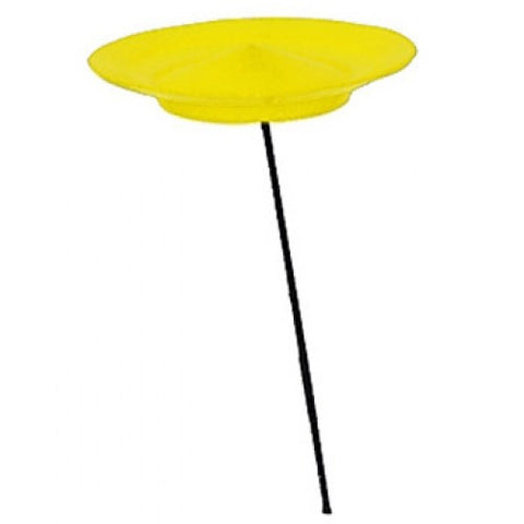 Higgins Brothers Spinning Plates - Yellow