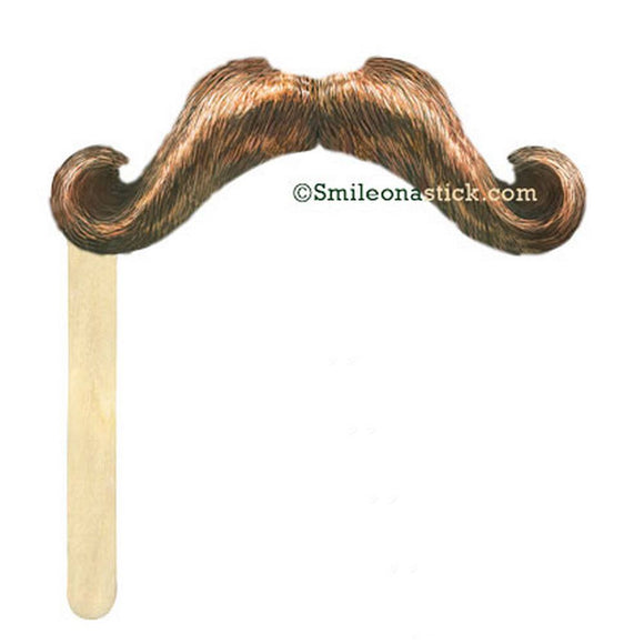 Stache on a Stick - Brown ®