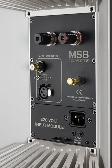 MSB M204 Monoblock Amplifiers - Alma Music and Audio - San Diego, California