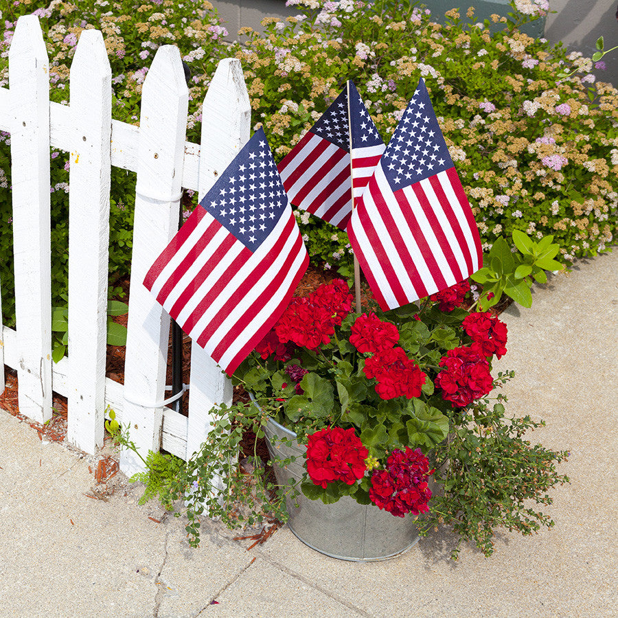 Red, White and Blue Garden