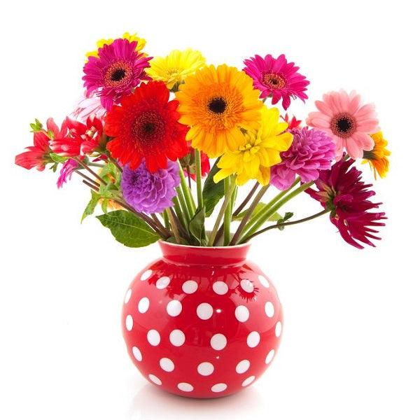 Flowers in red dotted vase