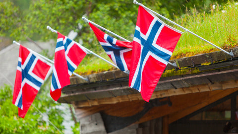 Flags on Roof