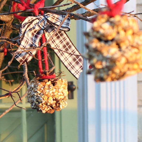 pinecone holiday bird feeder