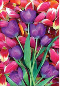 Purple Tulips Spring Garden Flag