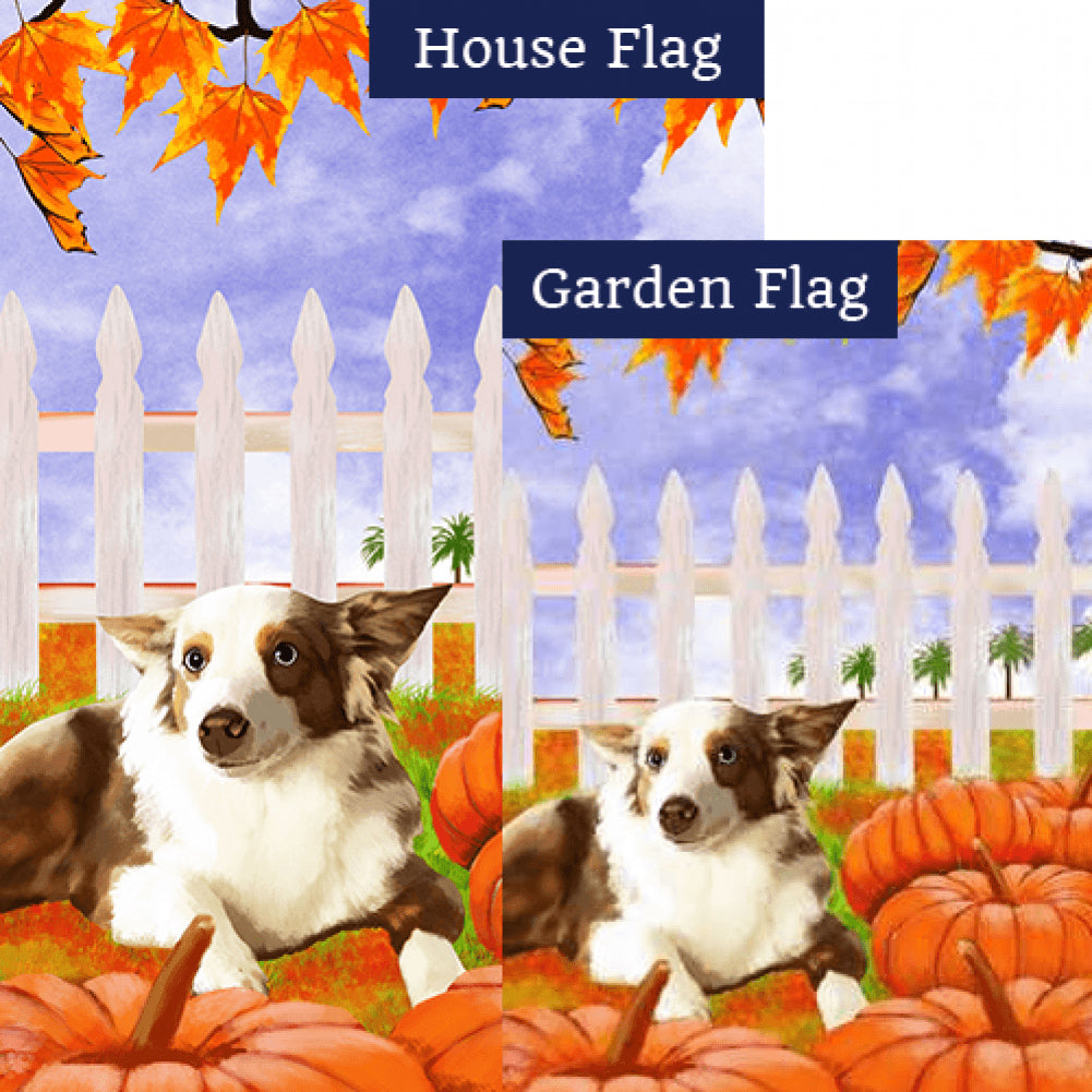 Dog With Pumpkins Flags Set (2 Pieces)