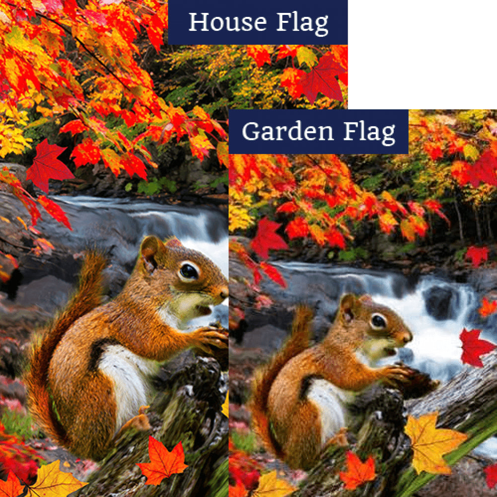 Squirrel At Waterfall Flags Set (2 Pieces)
