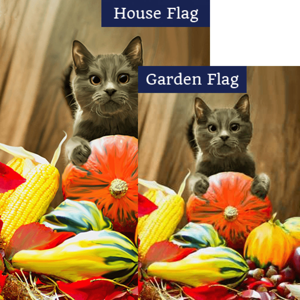 Cat With Pumpkin Flags Set (2 Pieces)