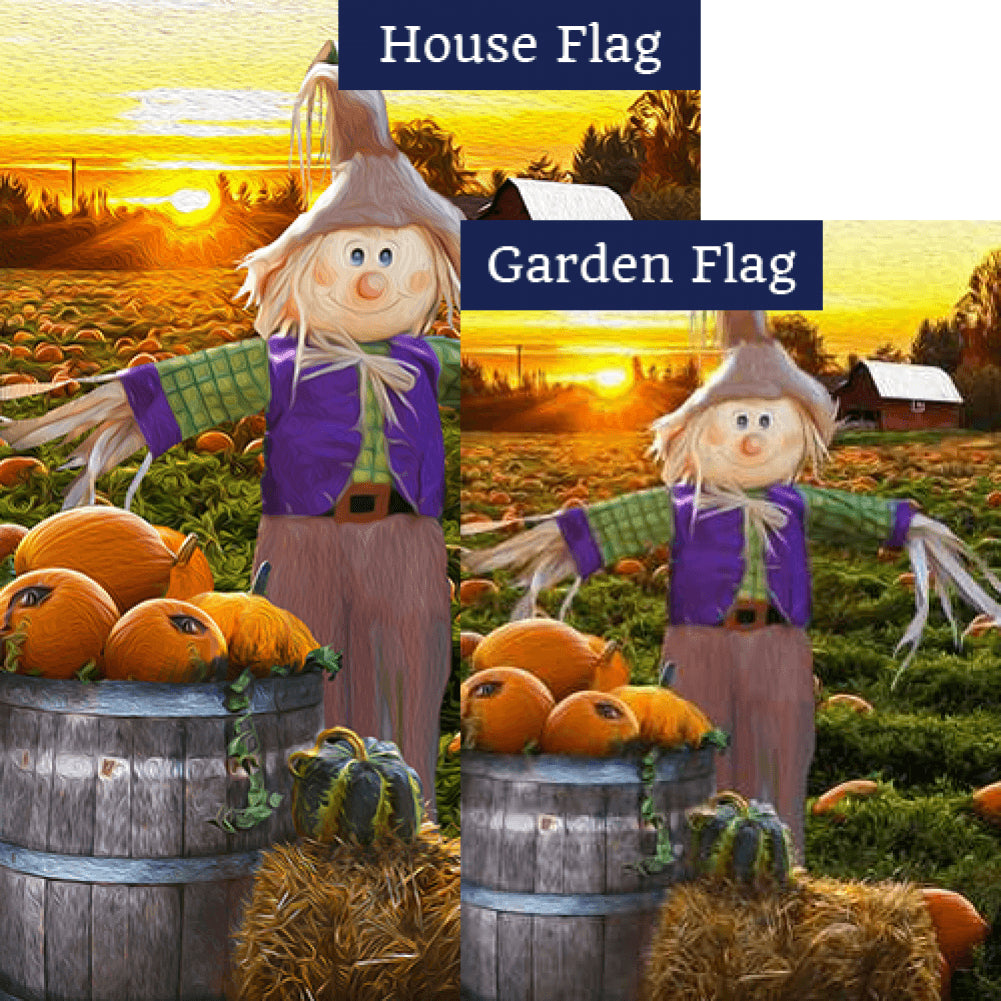Smiling Scarecrow Flags Set (2 Pieces)