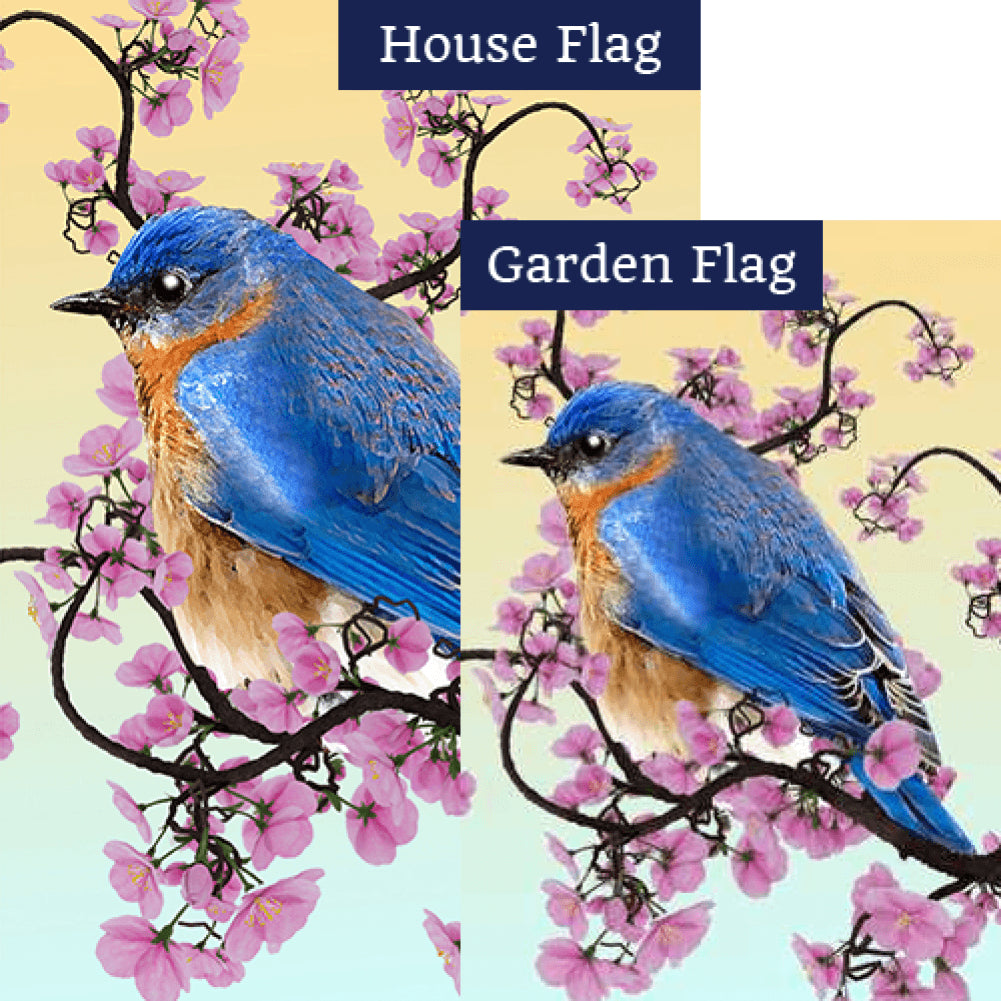 Little Boy Blue Double Sided Flags Set (2 Pieces)