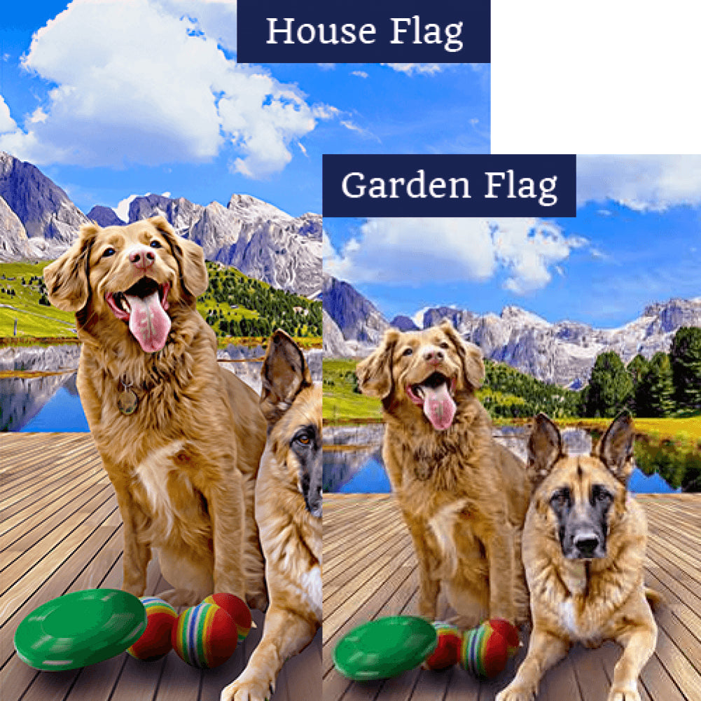 """Throw it Again!"" Double Sided Flags Set (2 Pieces)"