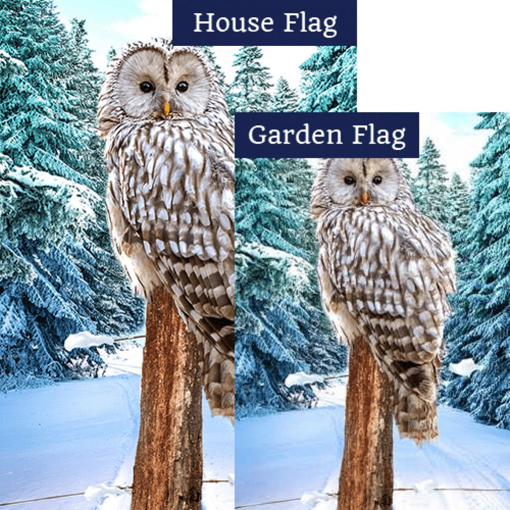 Owl's Winter Perch Flags Set (2 Pieces)