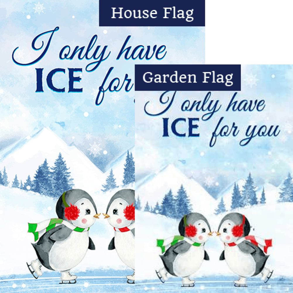 Cute Penguin Skaters Flags Set (2 Pieces)