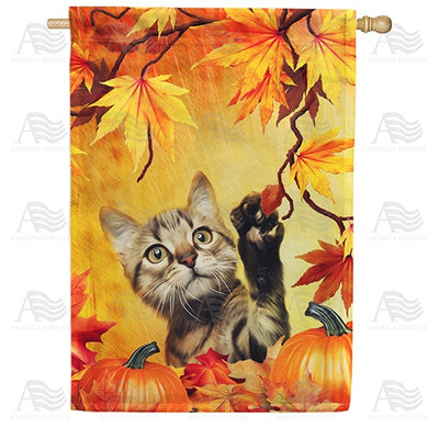 Curious Fall Kitten Double Sided House Flag