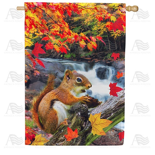 Squirrel At Waterfall Double Sided House Flag