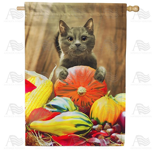 Cat With Pumpkin Double Sided House Flag