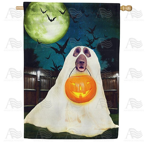 No Tricks, Just Treats! Double Sided House Flag
