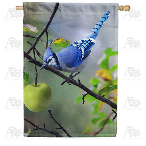 Blue Jay In Apple Tree Double Sided House Flag