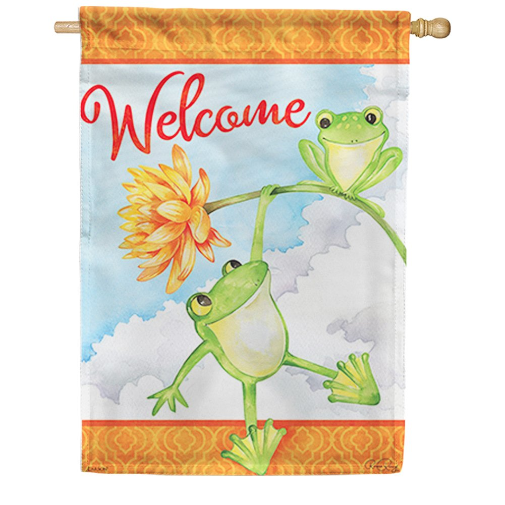 Frog Fun Double Sided House Flag