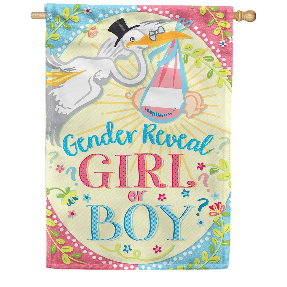 Gender Reveal Double Sided House Flag