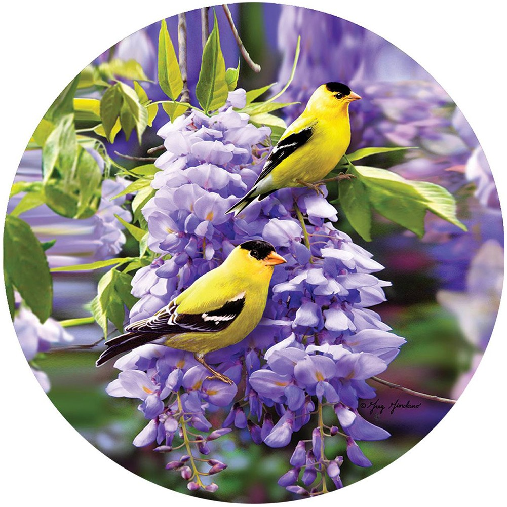 Goldfinch Wisteria Accent Magnet