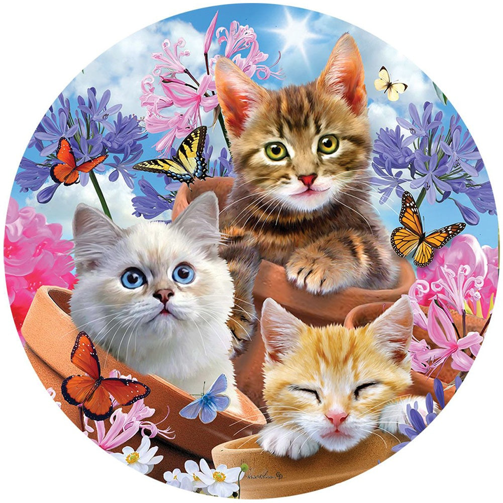 Kittens and Flowers Accent Magnet