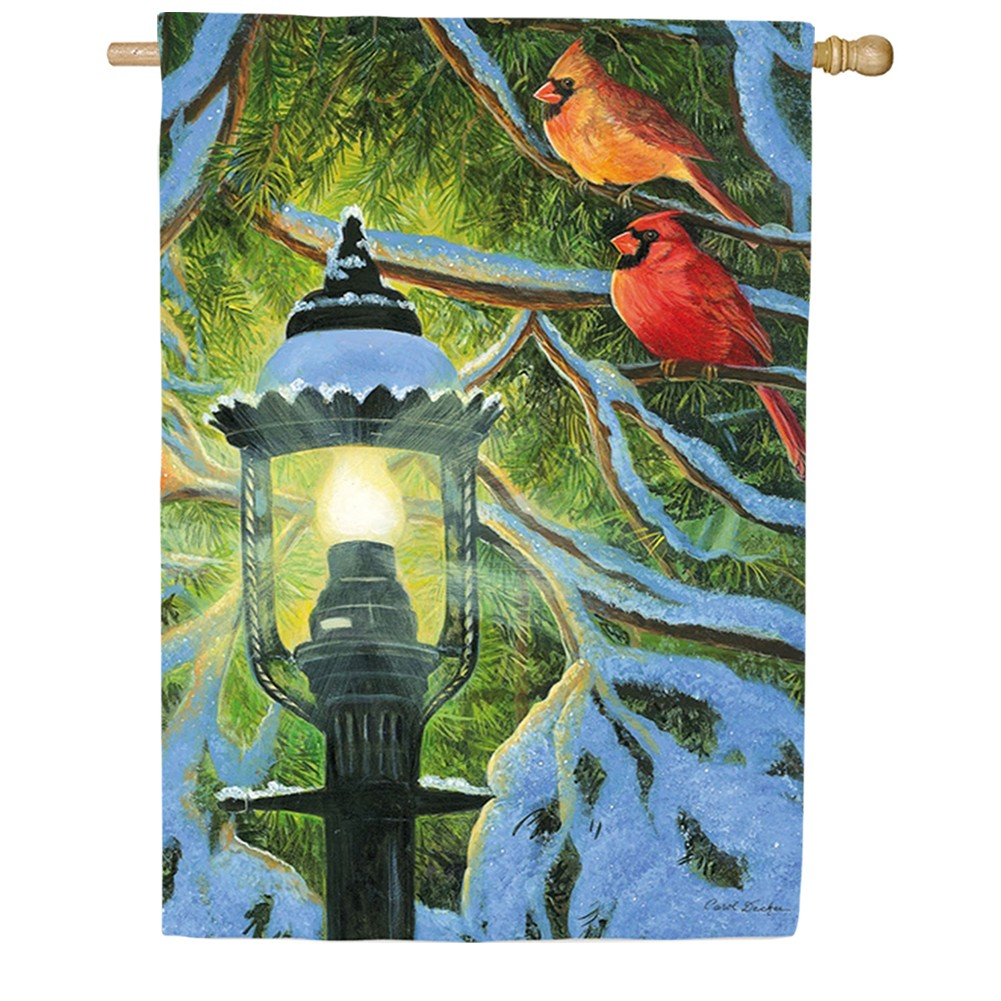Village Lamp Light House Flag