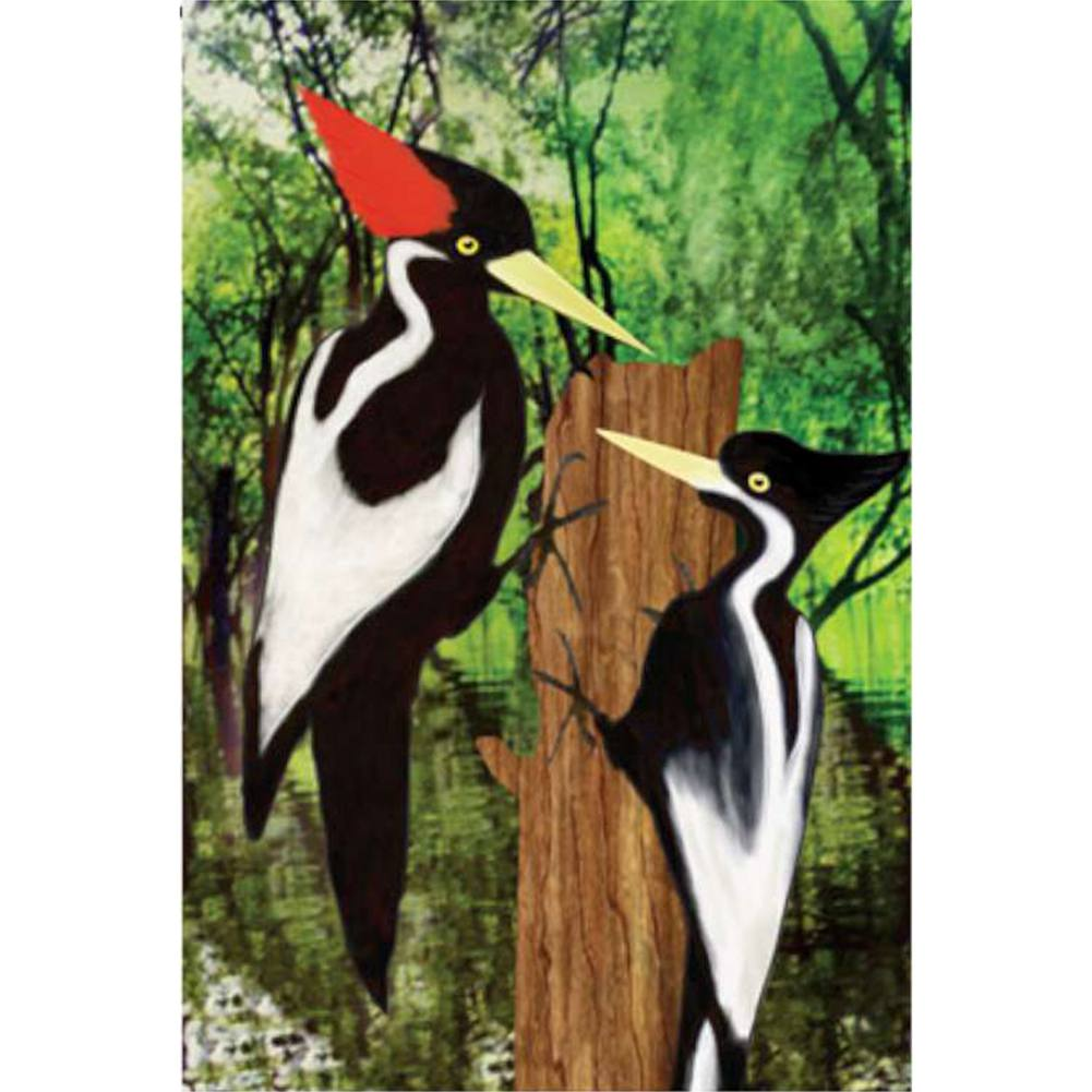 Ivory Woodpecker Brilliance Garden Flag