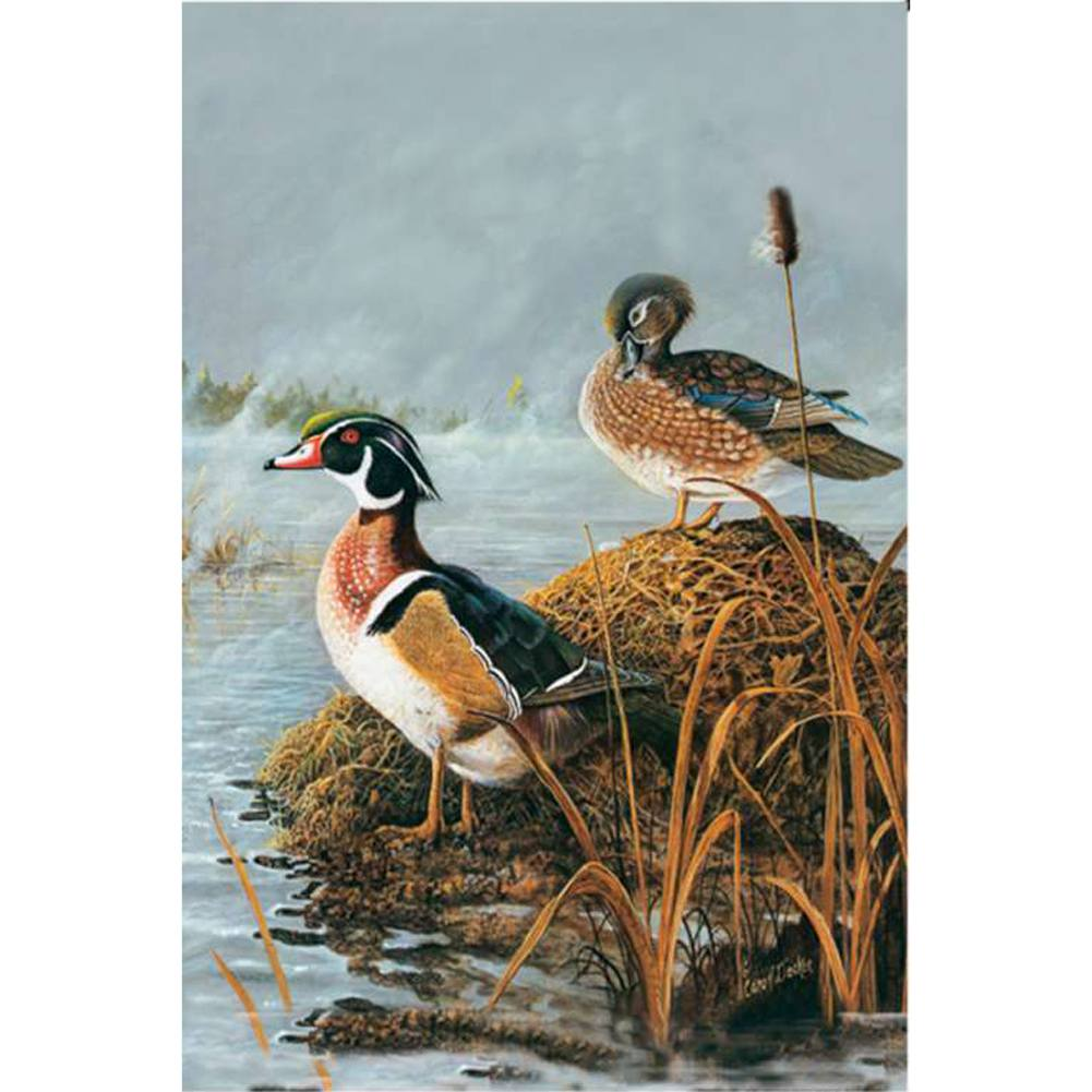 Steamy Wood Ducks Illuminated Garden Flag