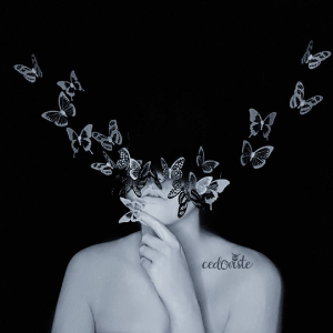 'Metamorphose' Butterflies Illusion Video by Ana Cedoviste
