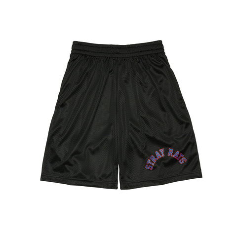 Two-Tone Arch Mesh Short