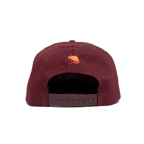 Mini College Arch Snapback Hat