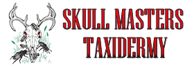 Skull Masters Taxidermy