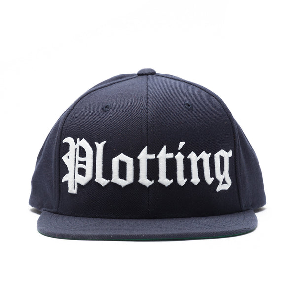 Plotting OE Snapback - Navy